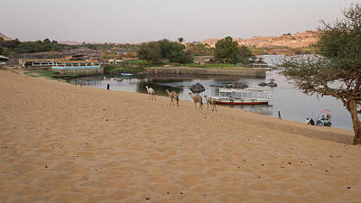 People Photograph - Nile by Silvia Bruno