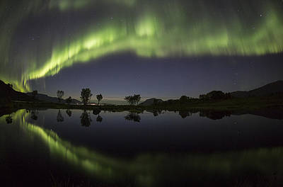 Norway Photograph - Northern Lights by Frank Olsen