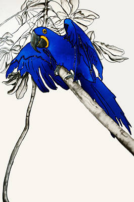 Macaw Mixed Media - On A Branch Near The Orchids In A Jungle Next To A Waterfall by Laura Price