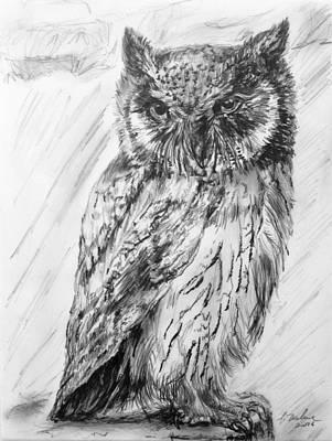 Owl Portrait Original by D Weber