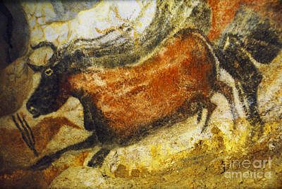 Southern France Photograph - Paleolithic Cave Painting by Ruth Hofshi