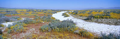 Panoramic View Of White Salt And Desert Print by Panoramic Images