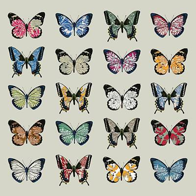 Papillon Print by Sarah Hough