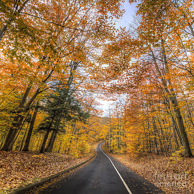 Pierce Stocking Drive In Fall Print by Twenty Two North Photography