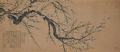 Poster Painting - Plum Blossom by MotionAge Designs