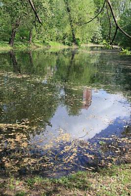 Pond Original by Lali Kacharava