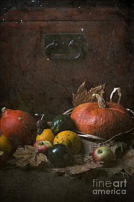 Postcard Digital Art - Pumpkins by Jelena Jovanovic
