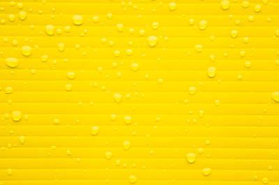 Rain Drops Print by Tom Gowanlock