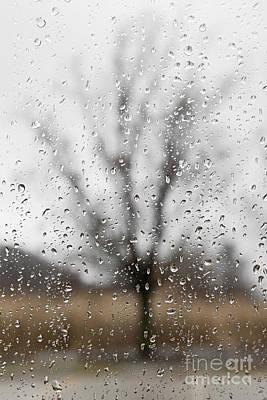Rainy Day Photograph - Rainy Day by Elena Elisseeva