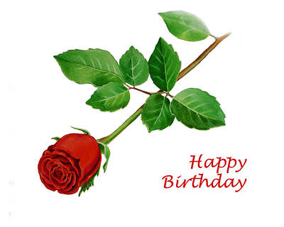 Red Rose Happy Birthday  Print by Irina Sztukowski