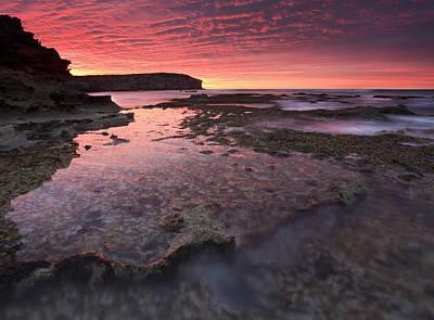 Kangaroo Photograph - Red Sky At Morning by Mike  Dawson
