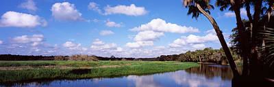 Florida State Photograph - Reflection Of Clouds In A River, Myakka by Panoramic Images