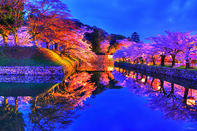 Castle Photograph - Reflection Of Spring by Midori Chan