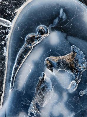 Plexiglas Photograph - Rhyolite Cracked Window 6112 by Bob Neiman