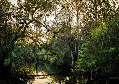 Palmetto Plants Photograph - River Bridge by Marvin Spates