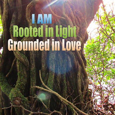 Rooted In Light Print by Dawn Richerson