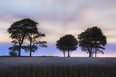 Roundway Hill - England Print by Joana Kruse