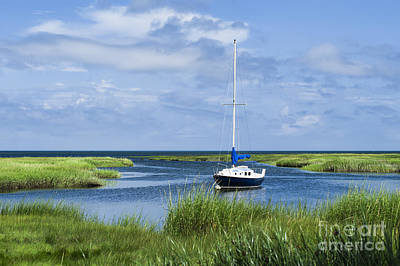 Sailboat Salt Marsh Print by John Greim