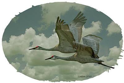 Crane Digital Art - Sandhill Crane Pair by Larry Linton