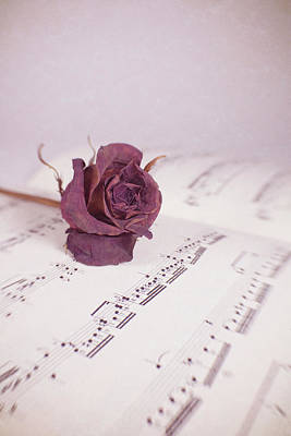 Photograph - Single Rose On Sheet Music by Bernice Williams
