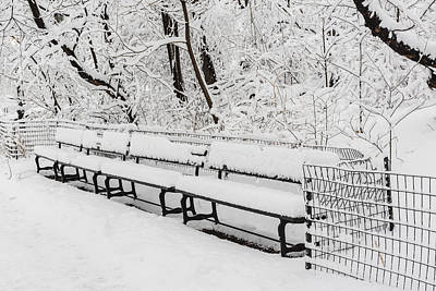Snow In Central Park Nyc Print by Susan Candelario