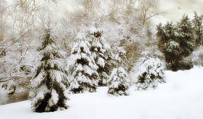 January Digital Art - Snow Pines by Jessica Jenney