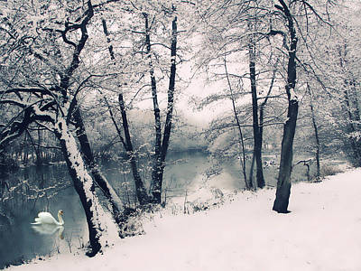 December Photograph - Snow Pond by Jessica Jenney