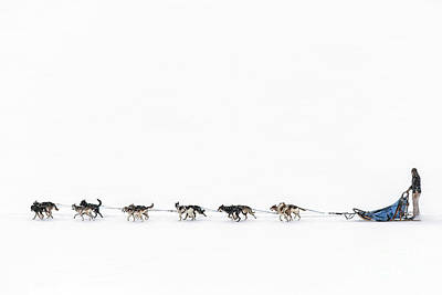 Snowbound Print by Evelina Kremsdorf