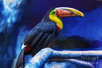 Toucan Mixed Media - South American Toucan  by Garland Johnson