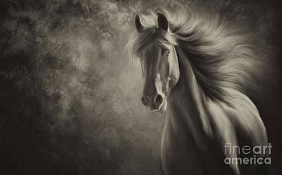Horse Photograph - Spirit by Patty Hallman