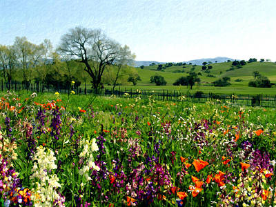 Poppies Photograph - Spring Bouquet At Rusack Vineyards by Kurt Van Wagner