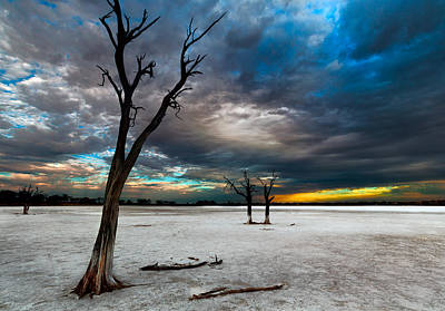 Western Australia Photograph - Still Here by Julian Cook