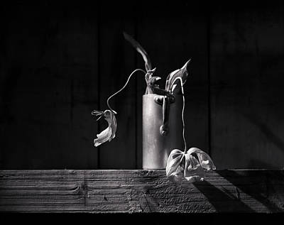 Greyscale Photograph - Still Life With Tulip by Nailia Schwarz