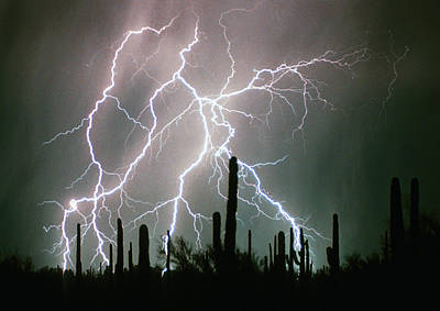 The Lightning Man Photograph - Striking Photography by James BO  Insogna