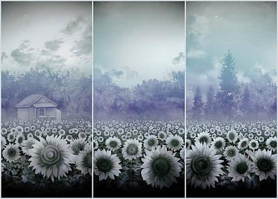 Sunflowers Triptych Print by Bekim Art