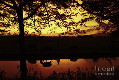 Binh Photograph - Sunset Van Long  by Chuck Kuhn