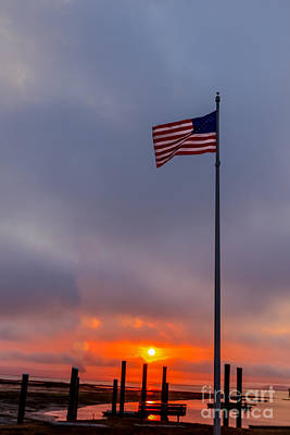 Fluttering Photograph - Symbol Of Freedom by Robert Bales