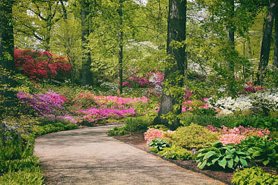 Garden Flowers Digital Art - The Azalea Path by Jessica Jenney