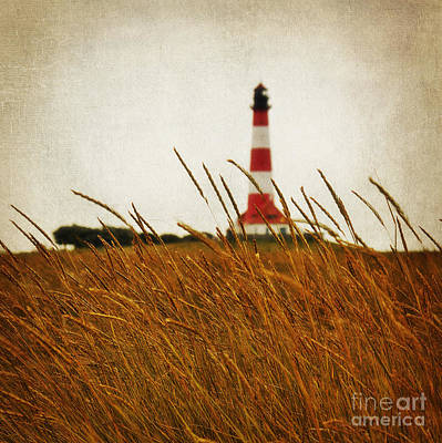Nature Photograph - The Lighthouse by Angela Doelling AD DESIGN Photo and PhotoArt