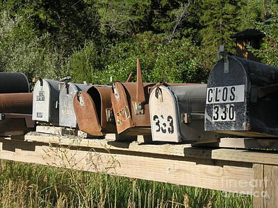Mail Box Photograph - The Long Wait  by Diane Greco-Lesser