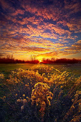 Heaven Photograph - The Love That Lights My Way by Phil Koch