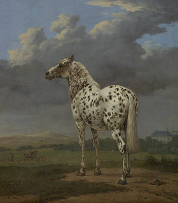 Field. Cloud Painting - The Piebald Horse by Paulus Potter