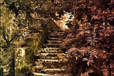 Mystery Photograph - The Stairs For The Secret Garden by Daniel Arrhakis