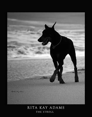 Home-sweet-home Photograph - The Stroll by Rita Kay Adams