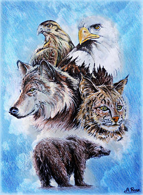 Wolves Drawing - The Wildlife Collection by Andrew Read
