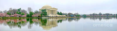 Jefferson Memorial Photograph - Tidal Basin With Cherry Blossoms by Jack Schultz