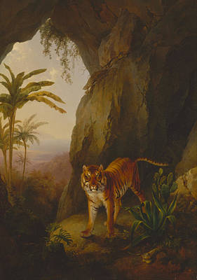 1814 Painting - Tiger In A Cave by Celestial Images