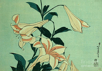 Lilies Drawing - Trumpet Lilies by Hokusai