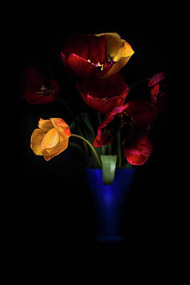 Celebrate Photograph - Tulips  by Ivan Vukelic