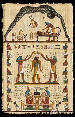 Twokupamun Papyrus Print by Richard Deurer